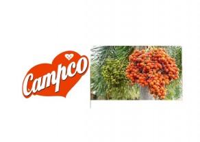 Areca Nut-Campco1.jpg